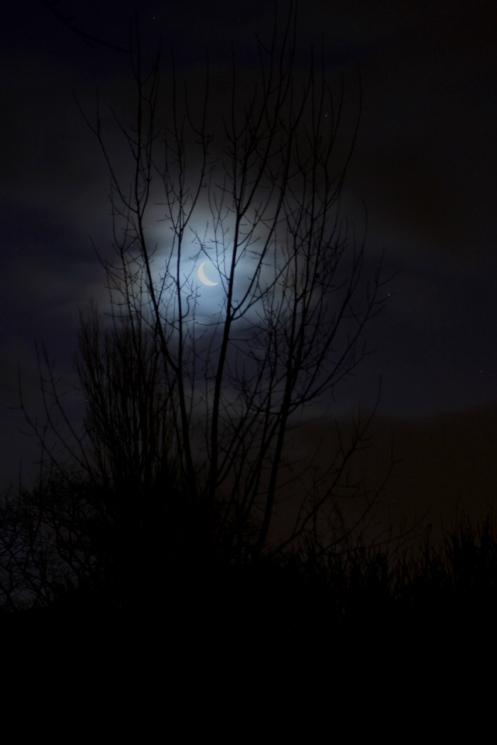 moon sat s