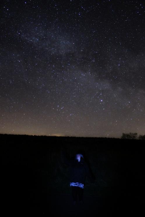 stella stars 2 s
